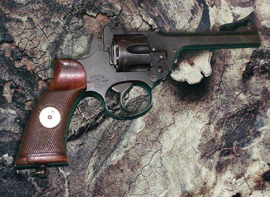 Enfield Gun
